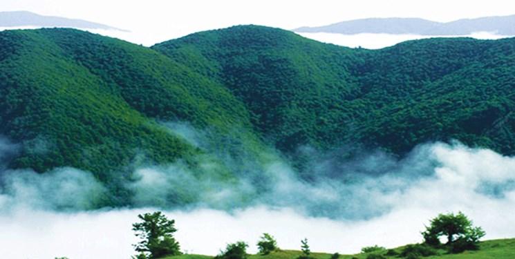 ثبت جهانی جنگلهای ارسباران؛ از شایعه تا واقعیت/ چرا جنگلهای ارسباران ثبت جهانی نمیشود؟
