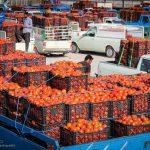 خام فروشی عادت دیرینه؛ سهم ناچیز از سبد صادرات محصولات تبدیلی کشاورزی در روزهای کرونایی
